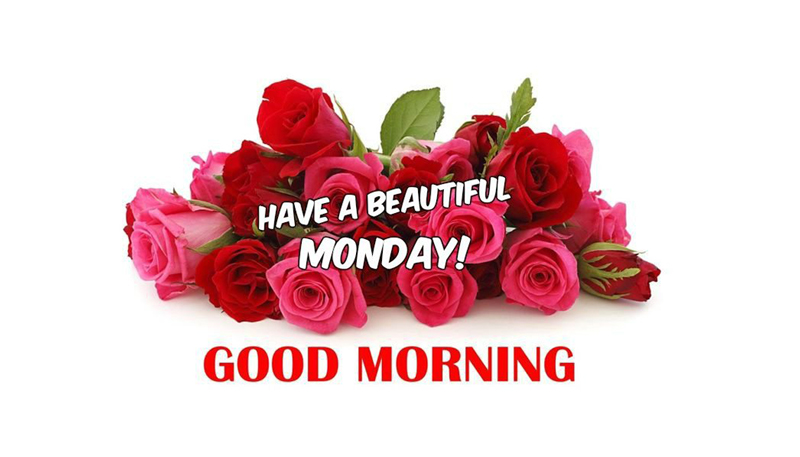 Monday Morning Messages & Wishes For Happy Monday