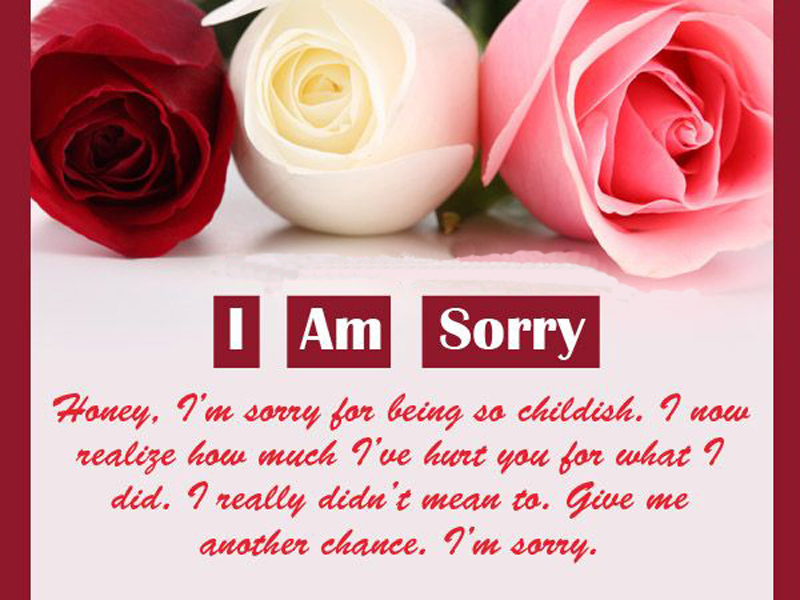 say sorry to husband quotes