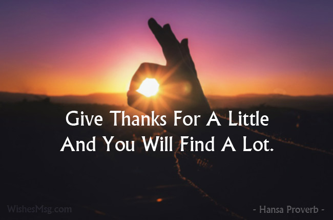 Appreciation Quotes To Show Your Gratitude