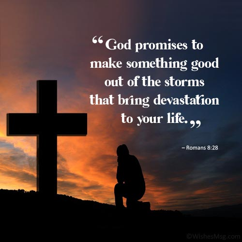 Bible verses about life