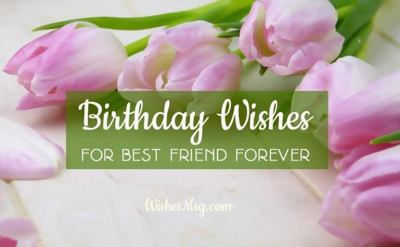 Birthday Wishes For Best Friend Forever – Male and Female