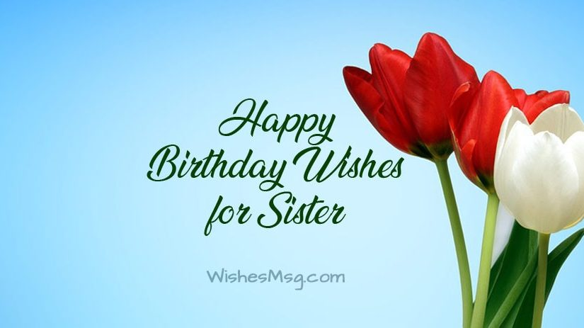 200+ Birthday Wishes for Sister – Birthday Messages