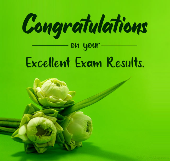 Congratulations-on-your-excellent-exam-results