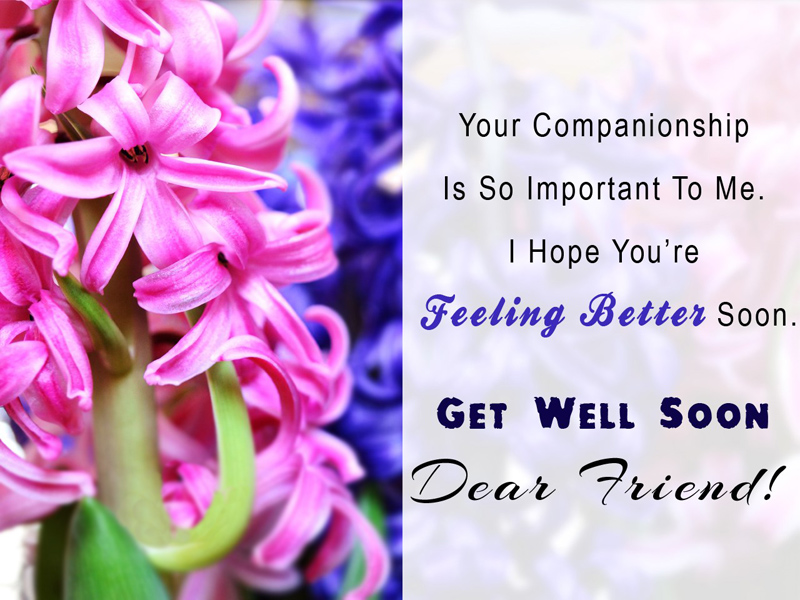 get well soon messages for friend inspiring funny wishesmsg