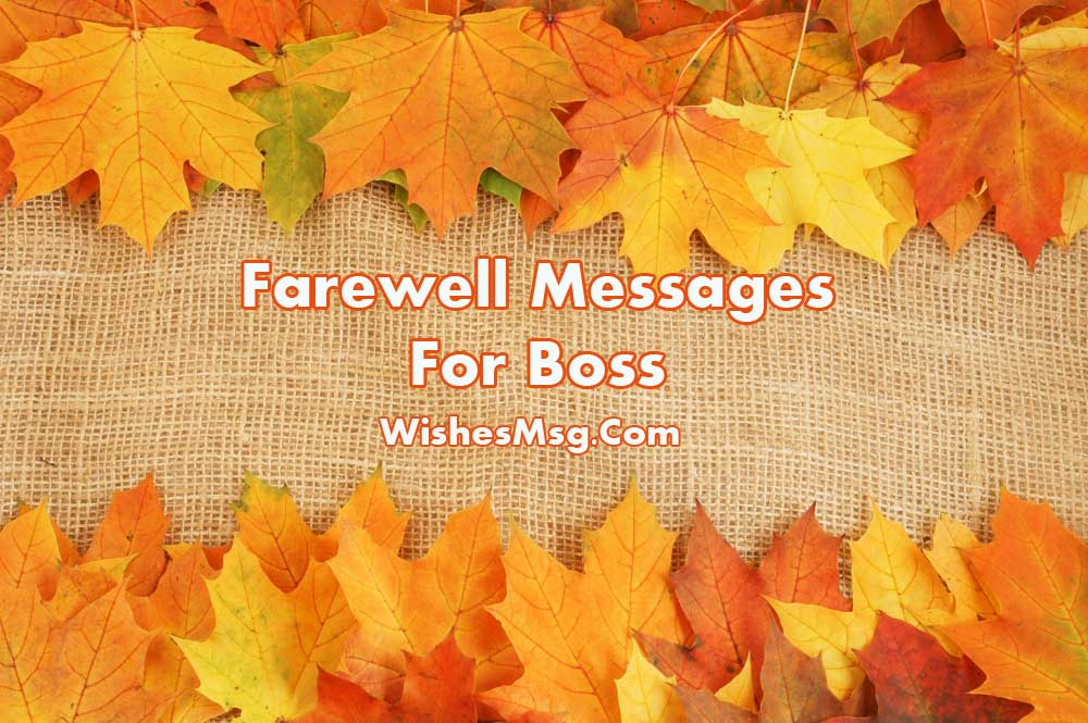 Farewell Message For Boss Goodbye Quotes Amp Wishes