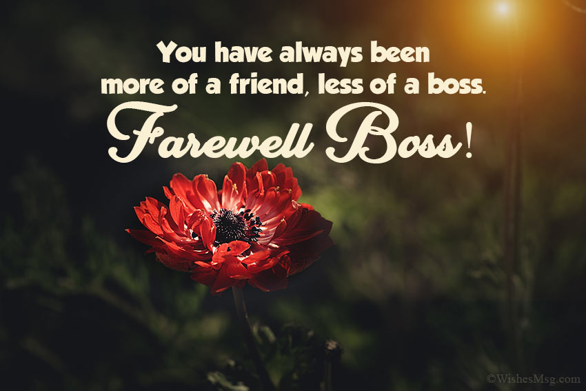Formal Farewell Message to Boss