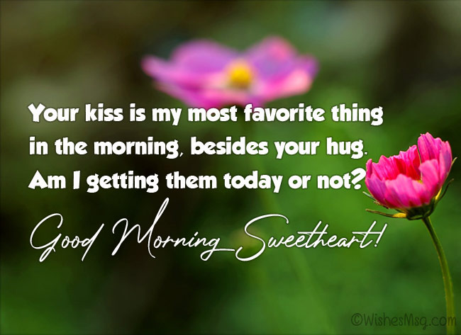 Funny Good Morning Wishes Messages Quotes Wishesmsg