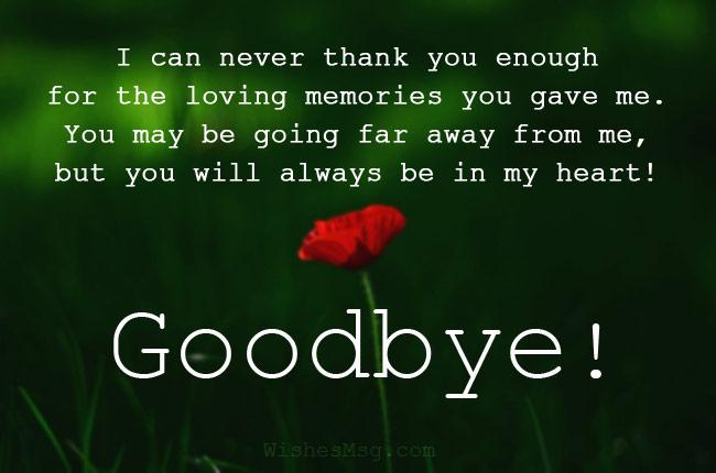 Heartfelt Goodbye Messages