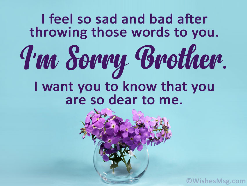 sorry message to brother
