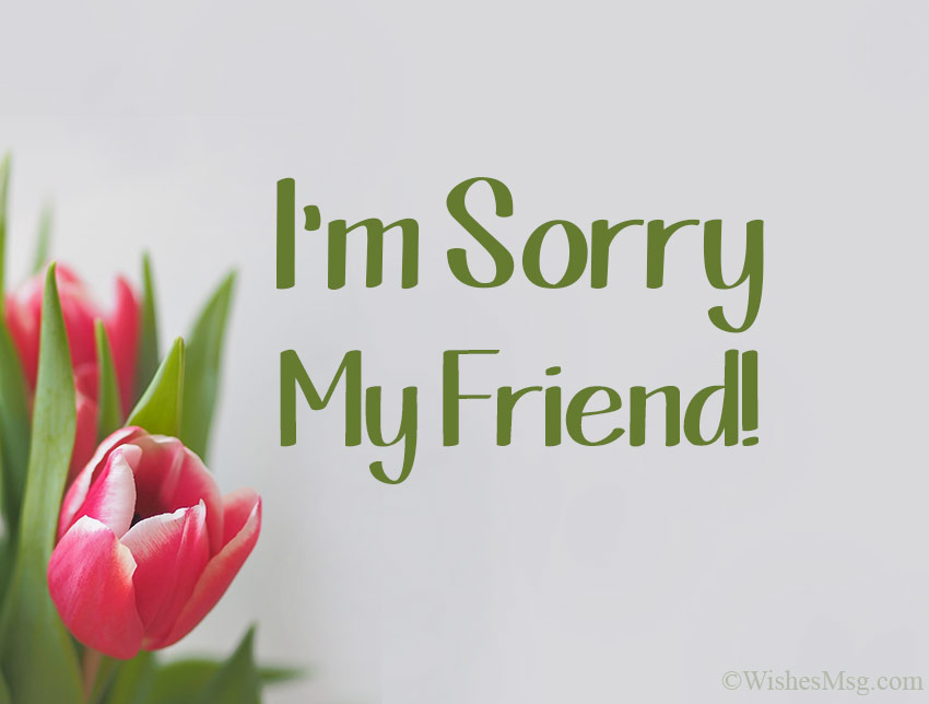 I'm-Sorry-Message-for-Friends
