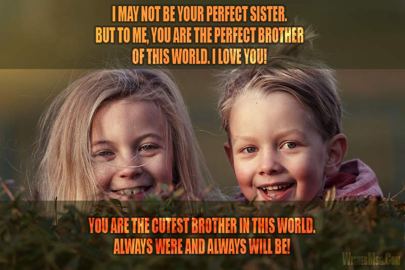 Message for Brother from Sister   Cute, Lovely and Funny   WishesMsg