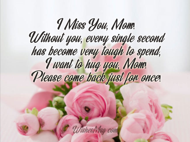 I Would Agree To Give Up My Own Life For The Reason See You Once Miss Seeing Your Beautiful Face Mom