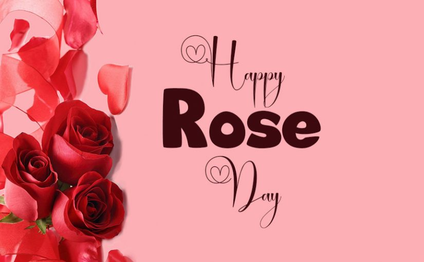 90+ Rose Day Wishes, Messages and Quotes