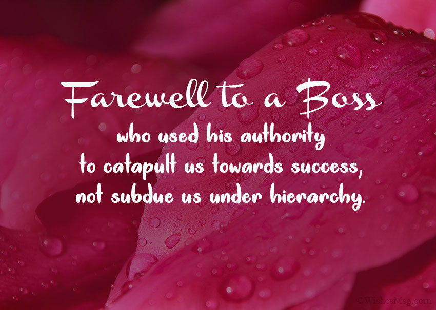 Farewell Wishes for Boss