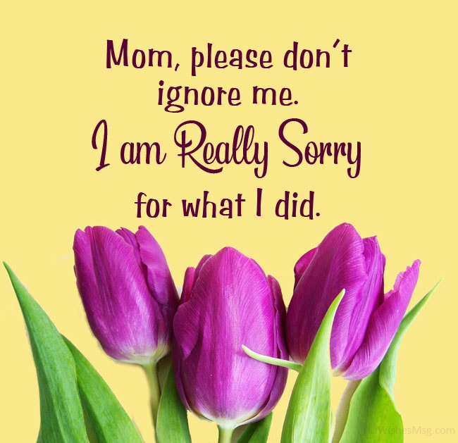 Sorry Message for Mother