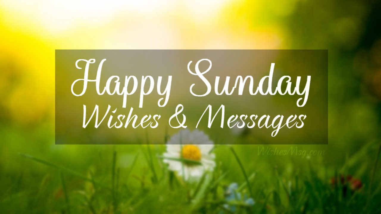 20 Happy Sunday Wishes, Messages and Quotes   WishesMsg