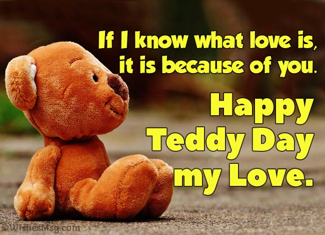 Teddy Day wishes for Him