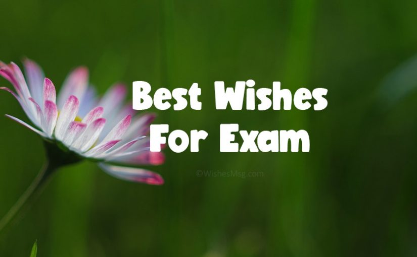 150+ Exam Wishes – Best Wishes For Exam