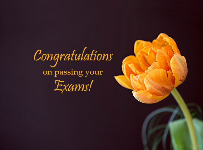 congratulations-on-passing-your-exams