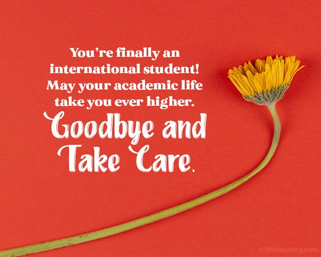 happy journey wishes for study