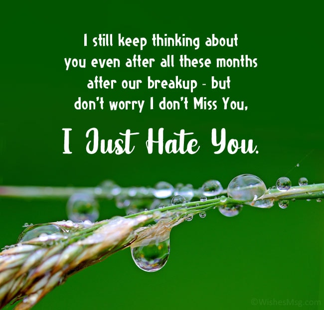 hate quotes for gf