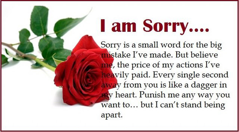 I am Sorry Messages For Wife - Sweet & Romantic - WishesMsg