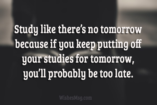 Motivational Phrases For Students: Motivational Study Quotes