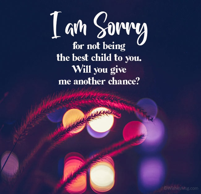 sorry msg to mom from son