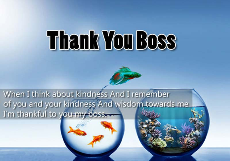 Image Result For Thank You Messages For Boss Appreciation Quotes Wishesmsg