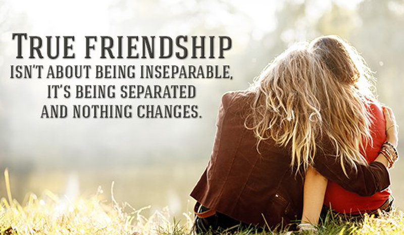 Touching Quotes About Friendship Endearing Best Emotional Friendship Messages And Quotes  Wishesmsg